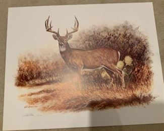 Gilbert Duran 631/1500 Deer Picture