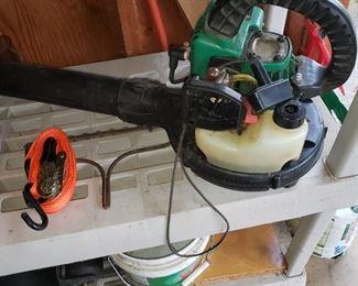 Gas Blower