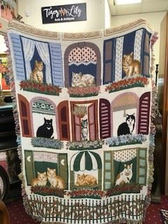 Nov30CatBlanket