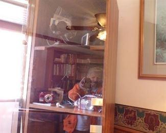 curio bookcase