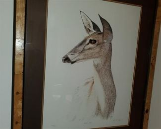 """Mule Deer"",  by Jayred"