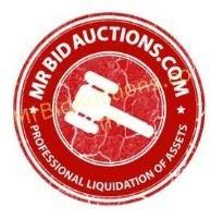 Mr Bid Logo