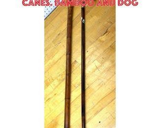 Lot 2603 2pcs Walking Stick Canes. Bamboo and dog