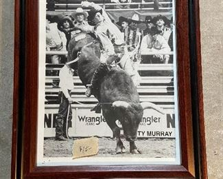 """Framed rodeo picture of """"Ty Murray"""" bull rider. Nine-time World Champion. Inductee of the Pro Rodeo Hall of Fame. He is also co-founder of the Professional Bull Riders (PBR). Measure 10 1/2"""" x 13"""". $15"""