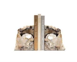 "Fossilized wood bookends from a private American forest, hand polished to high gloss  pricing varies by size, available at studio to view, assorted colors $40 - $350 for giant 14"" tall"