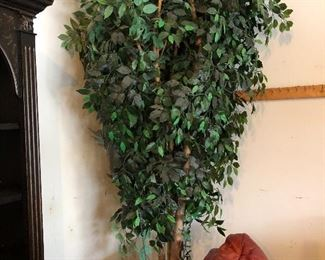 very large faux ficus tree - approx 10 ft tall