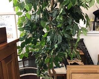 6 ft faux ficus tree in basket