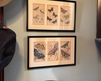 LARGE ASSORTMENT OF VINTAGE BUTTERFLY PRINTS.