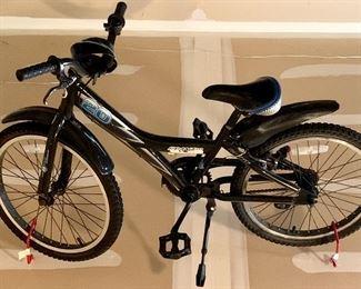 Giant 20 - Frantic Girls Bike $75