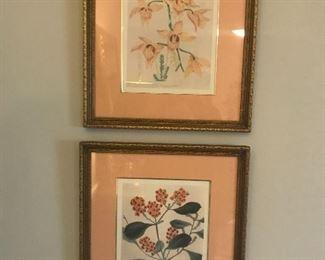 1940s botanical watercolors