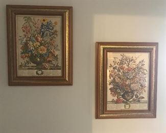 Framed English botanical prints