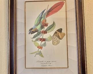 """$250 - Hand colored print in custom frame with crackle mat - 25.5"""" H x 19"""" W."""