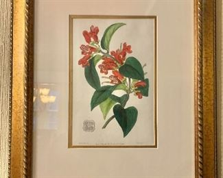 """$125 - J. Ridgway (early 1800's) hand colored copper engraving print.   16.5"""" H x 13.5"""" W."""