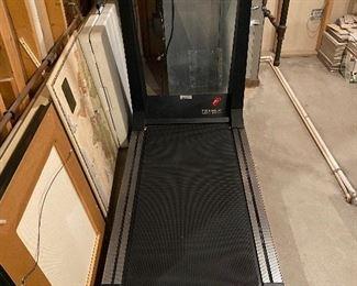 True treadmill S.O.F.T. 500 - working