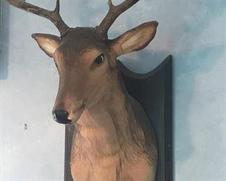 Talking Buck