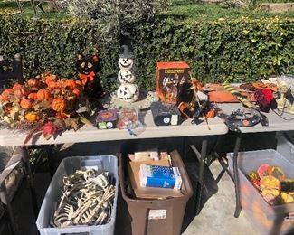 Holiday/Halloween decorations