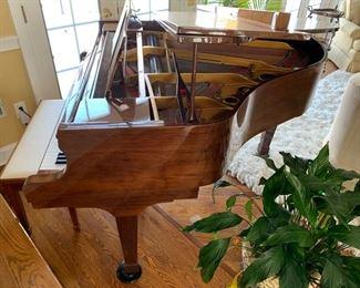 136. Sojin Baby Grand Piano G014263 (6')