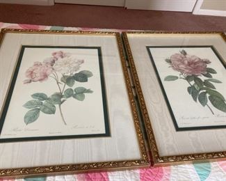 The Rose Prints