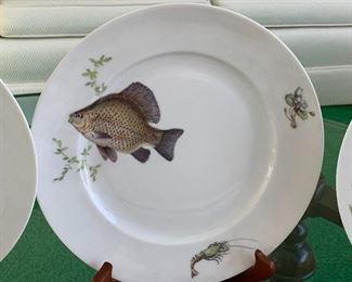 """KPM Krister (Germany) Platter and Plates. Beautiful fish motif. This fun lot includes a platter, gravy dish and 12 plates in four different patterns. No noticed chips or cracks. The platter measures 24"""" x 9"""""""