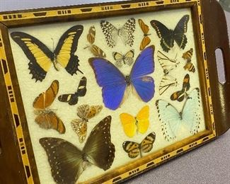 """Vintage Serving Tray w/ Butterflies - very colorful and fun! Measures 11"""" x 18"""""""