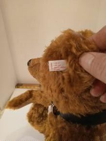 """Steiff Limited Edition of 1907 pieces.  """"One in a Million Bear"""" Comes with the bag and COA"""