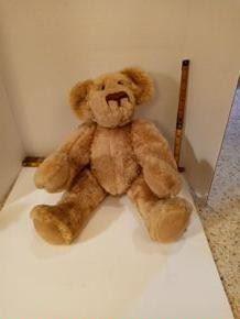 Large Brown Bear.  No Markings