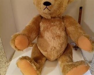 Steiff Bear.  X-Large