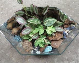 Charming Acrylic Terrarium with Mirrored Back