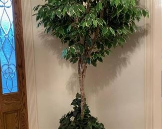 Faux Ficus Tree in Large Colorful Urn
