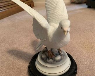 White Dove by Andrea by Sadek