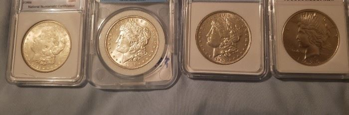 Graded Morgans and Peace Dollars