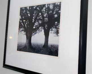 """Lot 5513. $52.00 Two Beautiful Black & White Photo Prints, Featuring trees in a mist - 22x22"""". Makes a nice grouping,"""