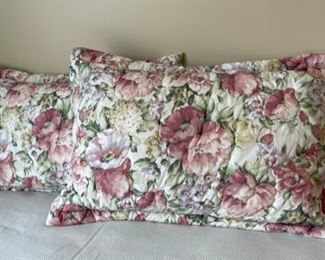CLEARANCE !  $3.00 NOW, WAS $12.00.........................2 King Size Pillows and Shams (H326)