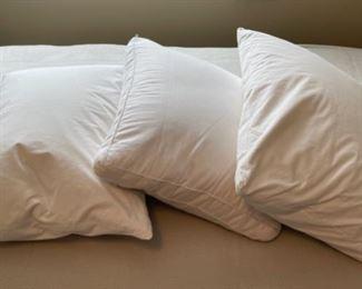 $20.00......................3 Down Pillows (H318)
