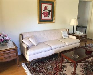 untouched sofa longs for your touch