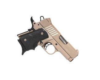 Para- Ordnance Warthog .45 ACP Semi-Automatic Pistol