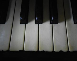 Ivory keys shows the grain