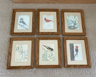 """CLEARANCE !  $2.00 NOW, WAS $6.00...................Set of 6 Bird Pictures 10 3/4"""" x 9"""" (S217)"""