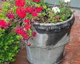 YARD Decor - Plants