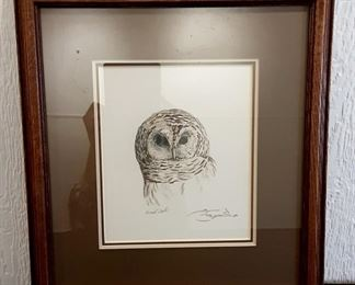 "Lot #	4 Pen & Ink ""Barred Owl"" Art Description:	 Framed And Matted, Approx. 15.5"" X 17"", Signed (Artist Unknown)"