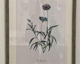 "Item 11:  De L'imprimerie Botanical Print - 16"" x 20"":  $65 ea"
