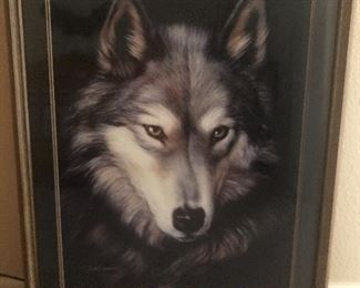 Gorgeous wolf picture