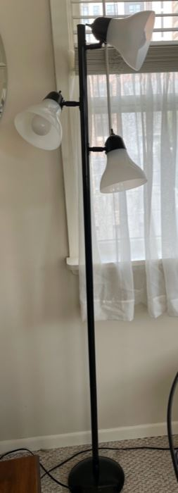 $10.00.....................Floor Lamp (B)