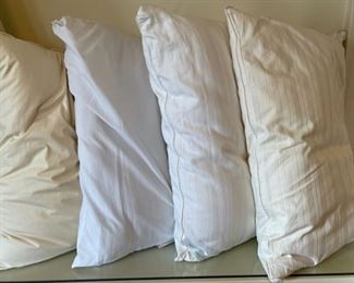 $12.00...................4 Gently Used Pillows (B175)