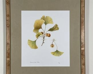 CORINNE LAPIN-COHEN BOTANICAL PRINT | Ed. 10/50; l. 14 x w. 12 (sight), h. 22 x w. 20 in. (framed)