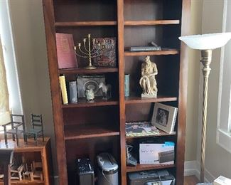 Large Bookcase from Costco lighted