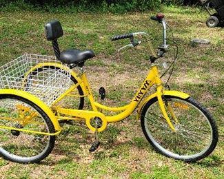 Trike... new