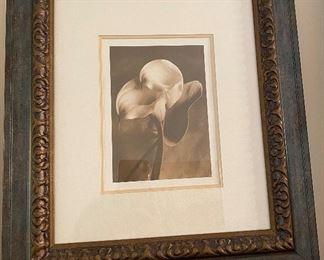 Lily in Pose by Santa Fe artist Sondra Wampler