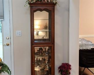 Lighted curio