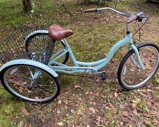 Schwinn Meridian Adult Bicycle